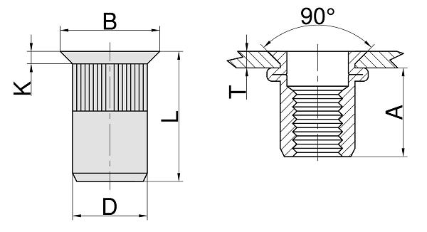N20-MVO